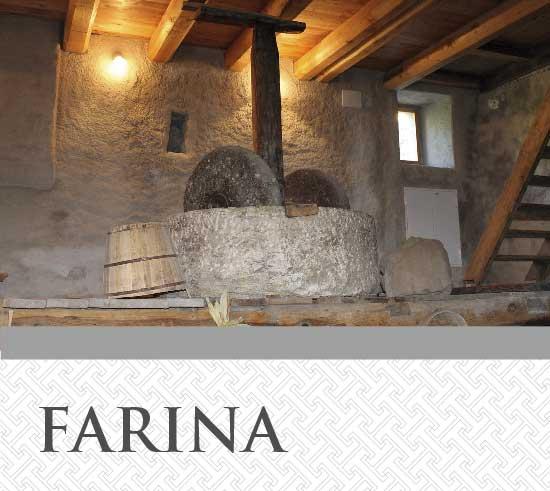 Farina T&G