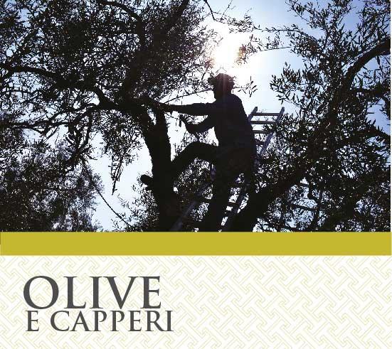 Olive e Capperi T&G