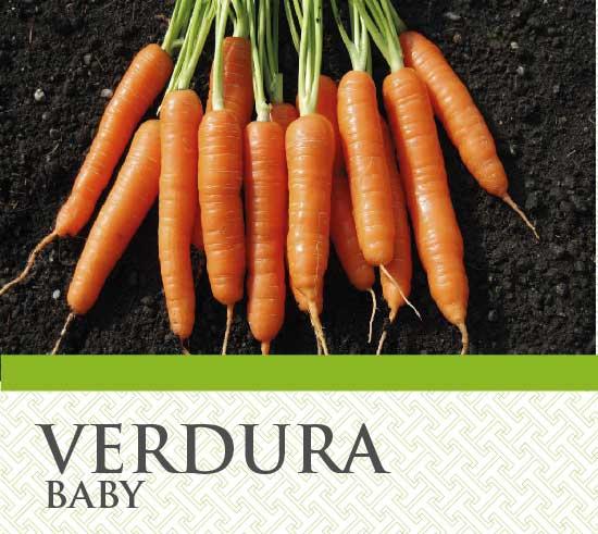 Verdure Baby T&G